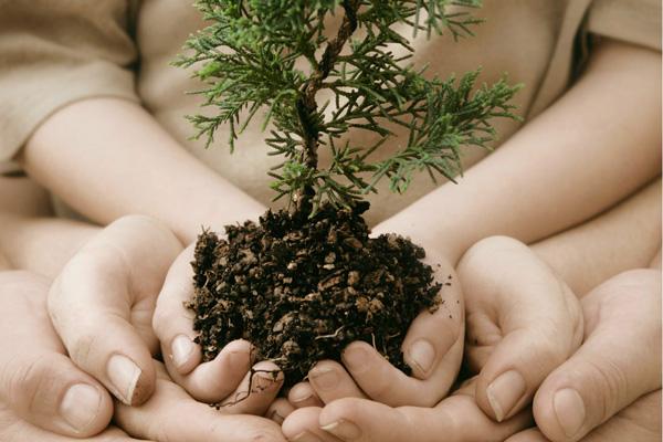curso tecnico em meio ambiente
